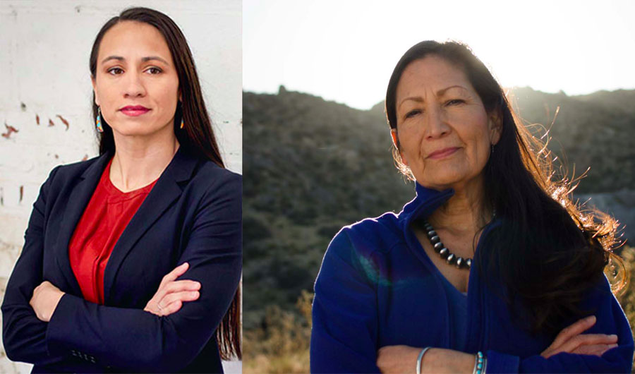 Native American Women Win Congressional and State Elections