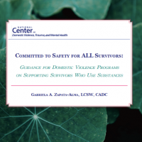 Committed to Safety for ALL Survivors: Guidance for Domestic Violence Programs on Supporting Survivors Who Use Substances