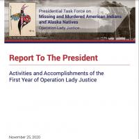Report To The President: Activities and Accomplishments of the First Year of Operation Lady Justice